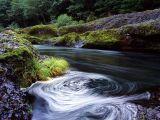 река красивая